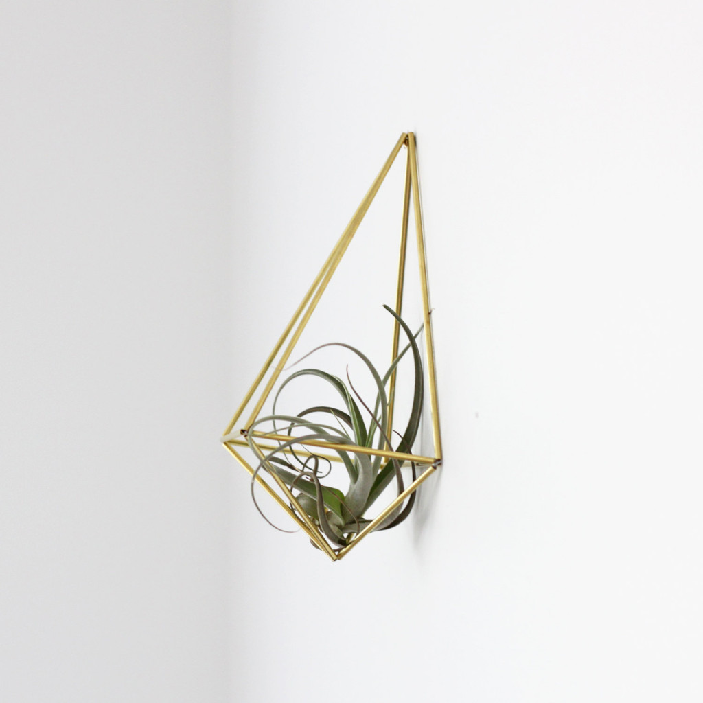 Air plant holder Himmeli by Hruskaa | plants at home