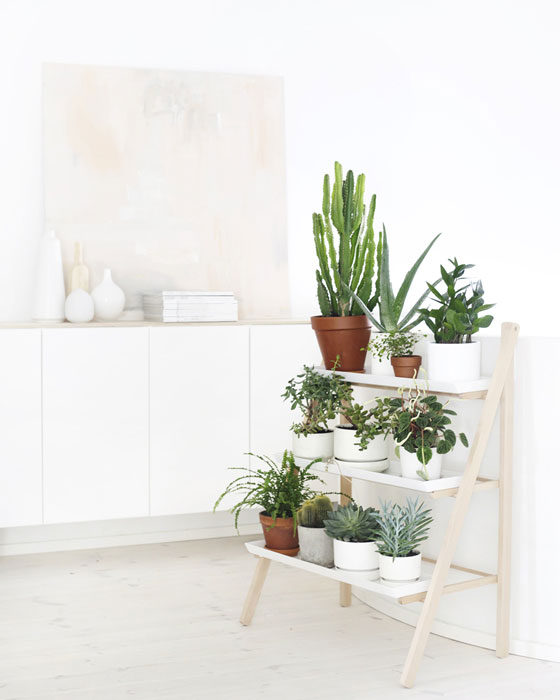 Kekkilä plant pot ladder | plants at home