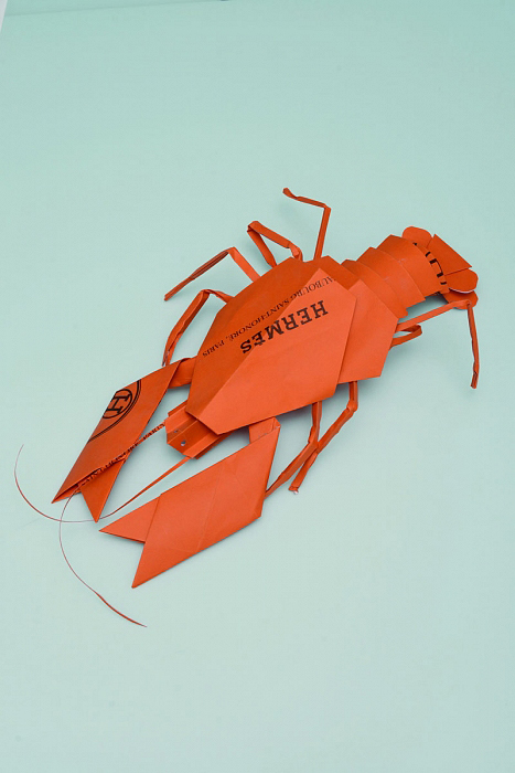 Sarah Illenberger | Hermès Lobster