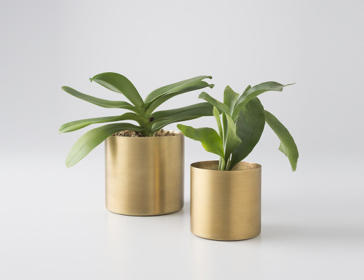 Brass Planter | Schoolhouse Electric and Supply