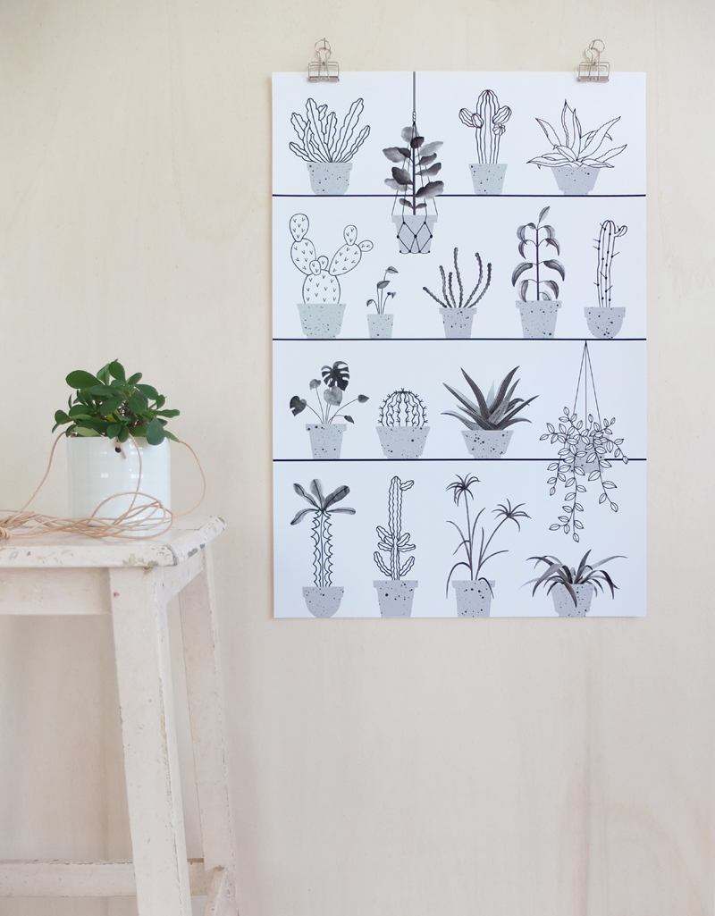 Audrey Jeanne | plants illustration