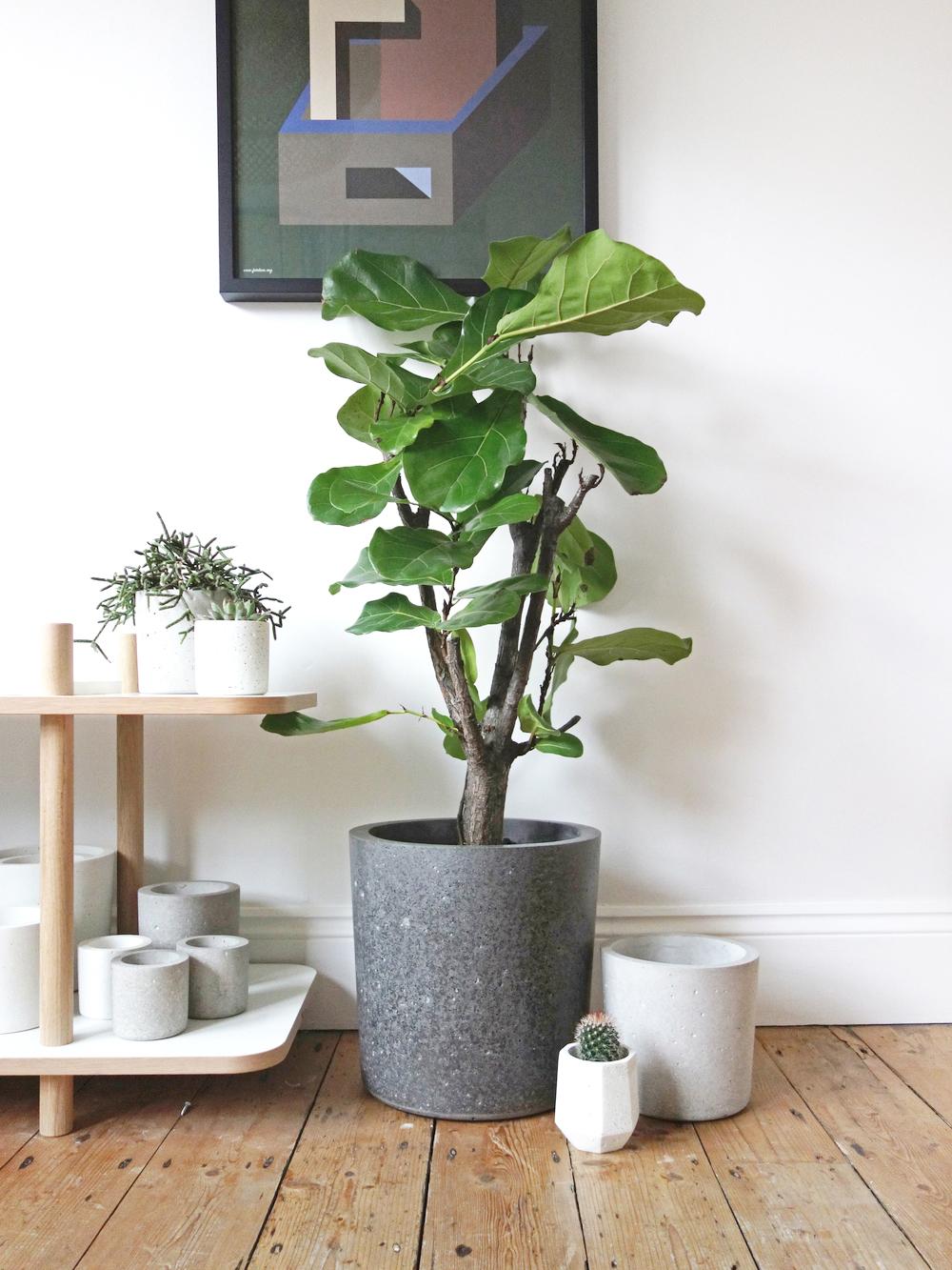 Concrete, Basalt & Marble Planters | Conpot London