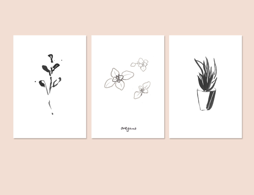 The 100 Day Project #SarahDrawsPlants
